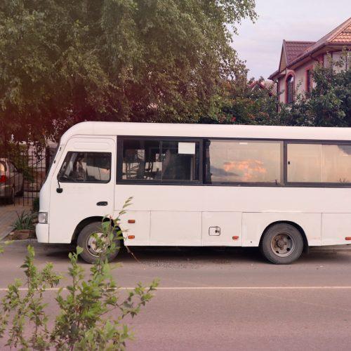 Bücherei-Bus mit Freilicht-Lesestunde