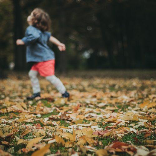 Entdecker*innen- Spaziergänge: spielerische Angebote, um die Natur in der Stadt zu entdecken- Vögel, Insekten & Blätter bestimmen / gemeinsames Bastel mit Naturschätzen