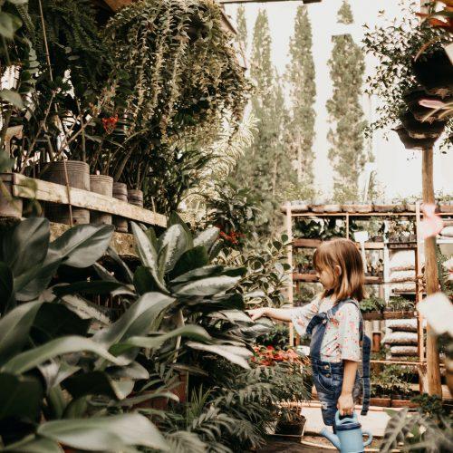 Samenbomben basteln mit Kindern & anschließendem Guerilla-Gardening – natürlich legal ;)
